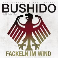 Cover Bushido feat. Kay One - Fackeln im Wind 2010