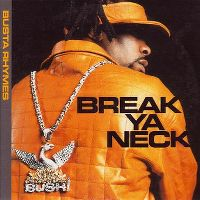Cover Busta Rhymes - Break Ya Neck