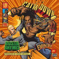 Cover Busta Rhymes feat. Eminem - Calm Down