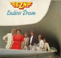 Cover BZN - Endless Dream