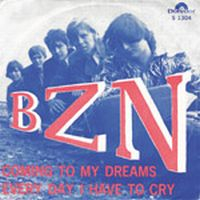 Cover BZN - Everyday I Have To Cry