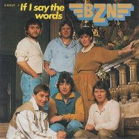 Cover BZN - If I Say The Words