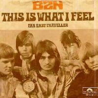 Cover BZN - This Is What I Feel