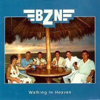 Cover BZN - Walking In Heaven