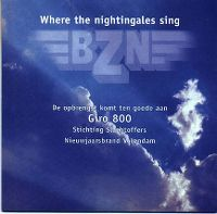 Cover BZN - Where The Nightingales Sing