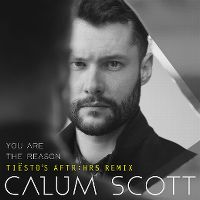 Cover Calum Scott - You Are The Reason