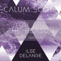 Cover Calum Scott & Ilse DeLange - You Are The Reason (Duet Version)