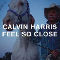 Cover Calvin Harris - Feel So Close