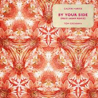 Cover Calvin Harris / Tom Grennan - By Your Side