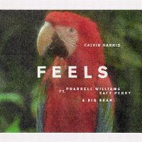 Cover Calvin Harris feat. Pharrell Williams, Katy Perry & Big Sean - Feels