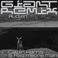 Cover Calvin Harris & Rag'n'Bone Man - Giant