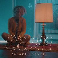 Cover Cam - Palace