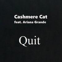 Cover Cashmere Cat feat. Ariana Grande - Quit