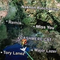 Cover Cashmere Cat, Major Lazer & Tory Lanez - Miss You