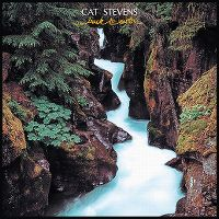 Cover Cat Stevens - Back To Earth