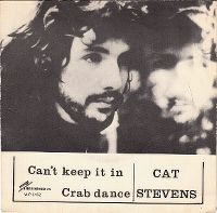 Cover Cat Stevens - Can't Keep It In