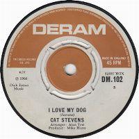 Cover Cat Stevens - I Love My Dog