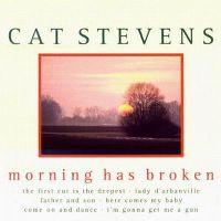 Cover Cat Stevens - Morning Has Broken