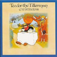 Cover Cat Stevens - Tea For The Tillerman