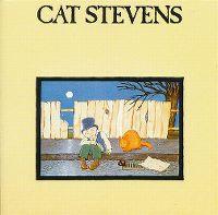 Cover Cat Stevens - Teaser And The Firecat