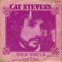 Cover Cat Stevens - Wild World