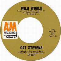 Cover Cat Stevens - Wild World