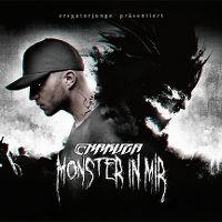 Cover Chakuza - Monster in mir