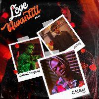 Cover CKay feat. Joeboy & Kuami Eugene - Love Nwantiti (ah ah ah)