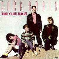 Cover Cock Robin - Thought You Were On My Side