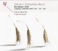 Cover Collegium Vocale Gent / Philippe Herreweghe - Johann Sebastian Bach: Du treuer Gott - Leipzig Cantatas BWV 101 - 115 - 103