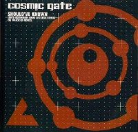 Cover Cosmic Gate - Should've Known