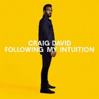 Cover Craig David - Following My Intuition