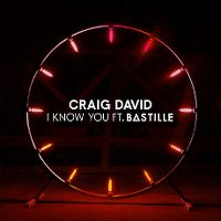 Cover Craig David feat. Bastille - I Know You