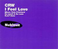 Cover CRW - I Feel Love