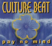 Cover Culture Beat - Pay No Mind
