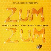 Cover Daddy Yankee x RKM & Ken-Y x Arcangel - Zum Zum