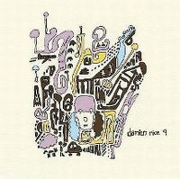 Cover Damien Rice - 9