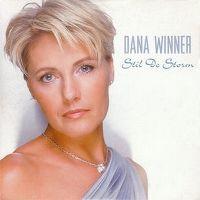 Cover Dana Winner - Stil de storm