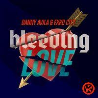 Cover Danny Avila & Ekko City - Bleeding Love
