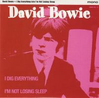 Cover David Bowie - I Dig Everything