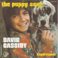 Cover David Cassidy - The Puppy Song