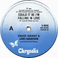 Cover David Grant & Jaki Graham - Could It Be I'm Falling In Love