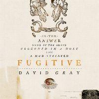 Cover David Gray - Fugitive
