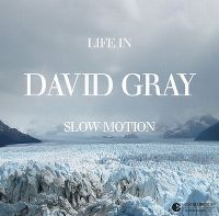 Cover David Gray - Life In Slow Motion