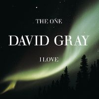 Cover David Gray - The One I Love