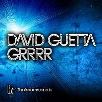 Cover David Guetta - Grrrr