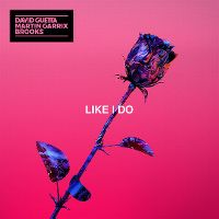 Cover David Guetta / Martin Garrix / Brooks - Like I Do
