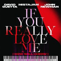 Cover David Guetta / MistaJam / John Newman - If You Really Love Me (How Will I Know)