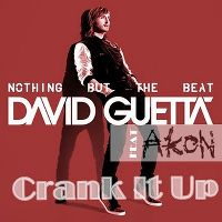 Cover David Guetta feat. Akon - Crank It Up