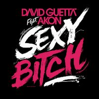 Cover David Guetta feat. Akon - Sexy Bitch